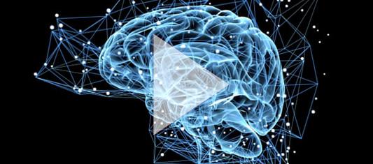 neuromarketing course